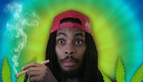 Waka Flocka Flame -- I'm Back On the Horse After My Weed 911 (VIDEO)