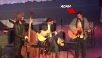 Adam Sandler -- Sings George Harrison Classic for Garry Shandling Memorial (VIDEO)