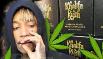 Wiz Khalifa -- My Favorite Beer is High Life Adjacent