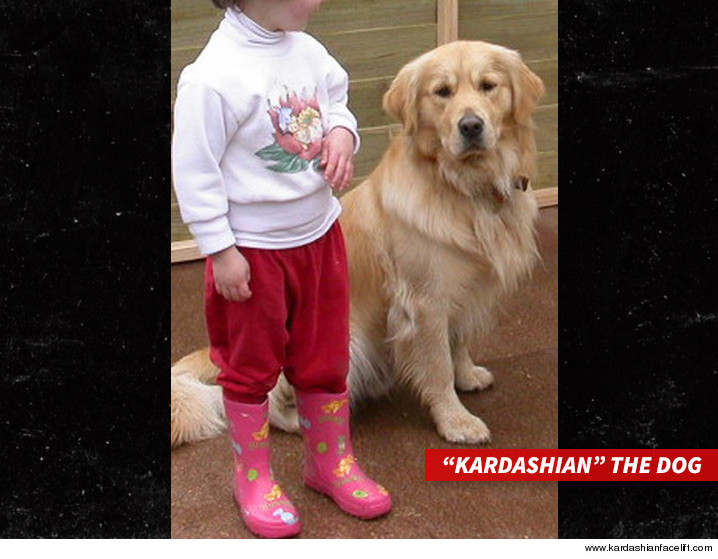 0520-kardashians-face-lift-art-SUB-Dog-KARDASHIAN_FACE_LIFT-01