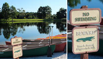 Disney Attack -- Neighboring Resort Warned of Alligators (PHOTOS)
