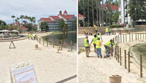 Disney Resort -- Building Fences After Alligator Attack (PHOTOS)