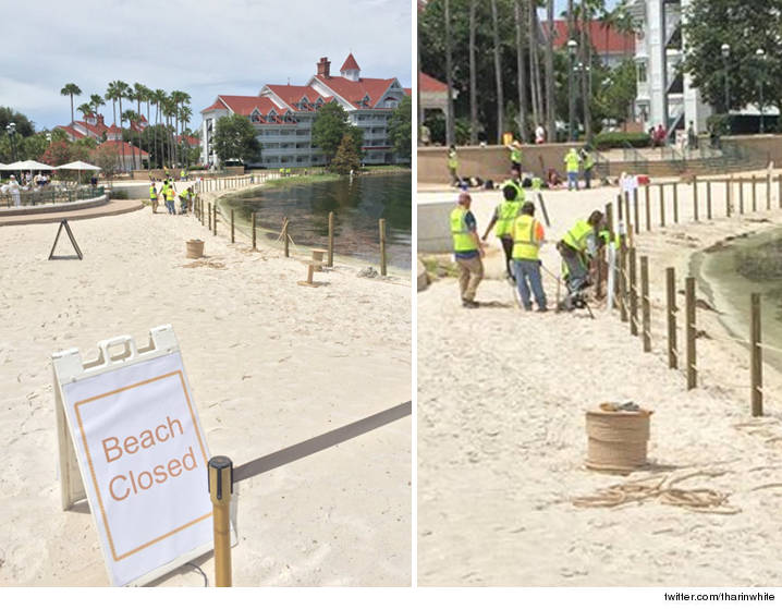 0617-florida-orlando-gator-beach-area-grand-floridian-new-fence-TWITTER-01