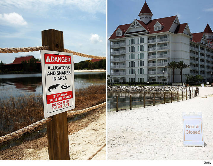 0622-grand-floridian-beach-getty-01