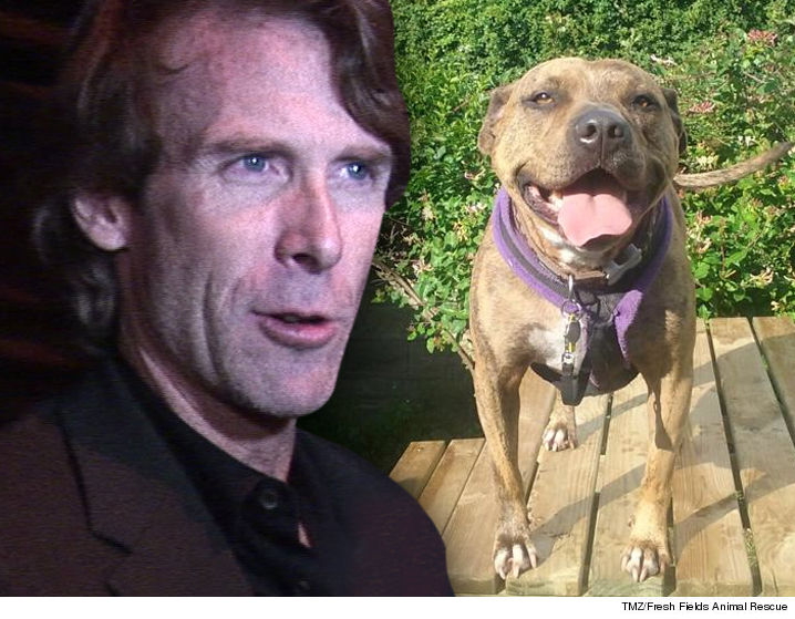 0705-michael-bay-freya-dog-TMZ-Freshfields-Animal-Rescue-01