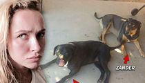 Hayden Panettiere -- My Dog Sitter is a Dirty Dog