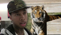 Tyga -- Expensive Pet Tiger Ain't MY Problem Now (VIDEO)