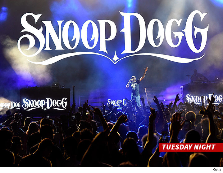 Fans Injured After Railing Collapses During Snoop Dogg/Wiz Khalifa Concert