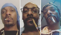31 Smokin' Shots Of Snoop to Celebrate National Dog Day!