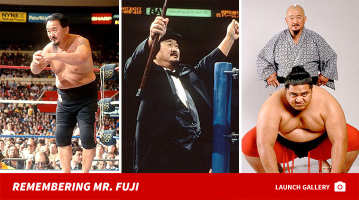 0828-mr-fuji-wwe-launch-02