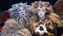 Grumpy Cat -- Alive-ish and Kickin' On Broadway (PHOTO)