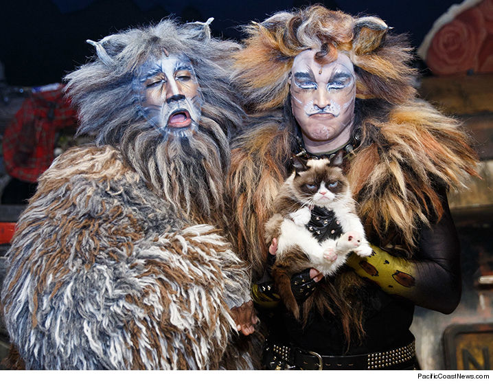 1001-grumpy-cat-cats-pcn-01