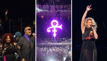Prince Tribute -- Stevie Wonder, Chaka Khan & More ... Nearly 5 Hour Send-off Show! (PHOTO GALLERY & VIDEO)