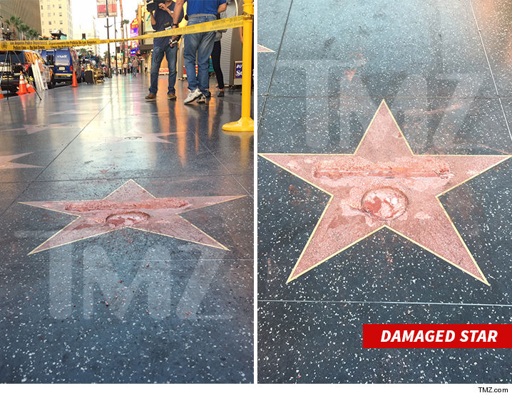 1026-donald-trump-star-tmz-02