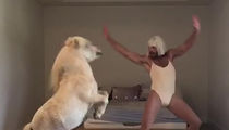 Sia -- 'Naked and Afraid' Star Horsing Around for 'Cheap Thrills' (VIDEO)