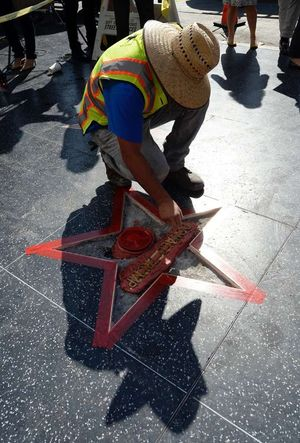 Donald Trump's Hollywood Star -- All Fixed Up
