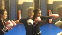 Sylvester Stallone to Demi Lovato -- Here's How to Box Like a Champ ... in Hollywood, Anyway (VIDEOS)