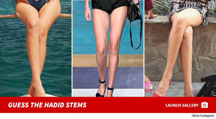 hadid_stems_guess_footer