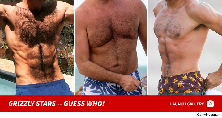 grizzly_stars_guess_who_footer