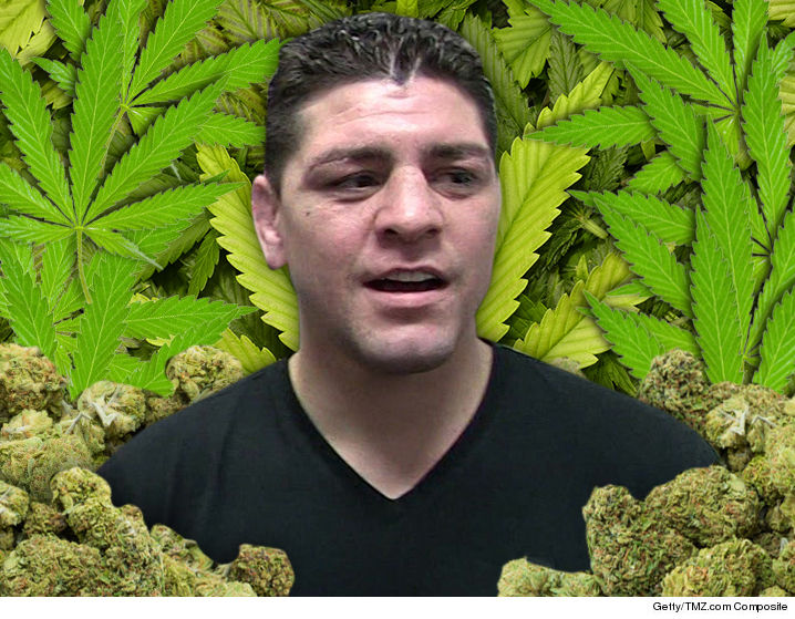 1130-nick-diaz-weed-marijuana-fun-art-TMZ-01