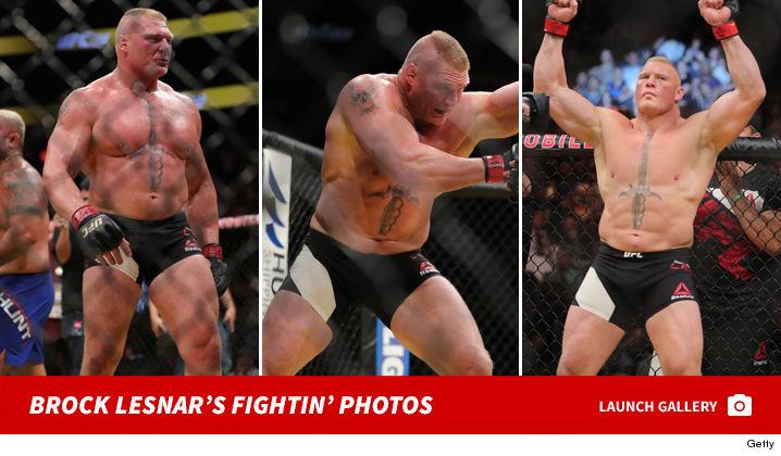 1223_brock_lesner_fight_footer2