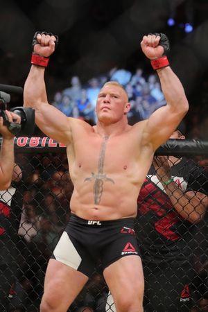 Brock Lesnar's Fightin' Photos