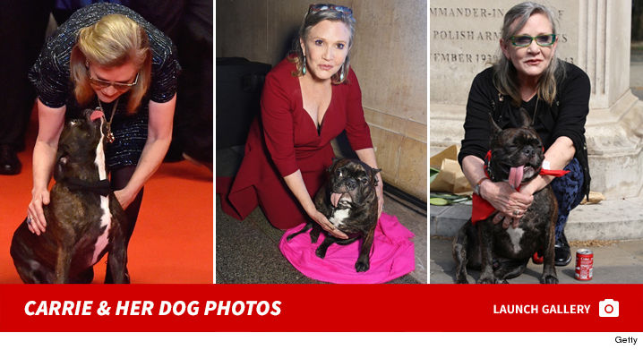 1223_carrie_fisher_dog_footer2