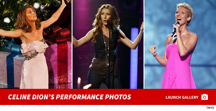 1223_celine_dion_performance_footer