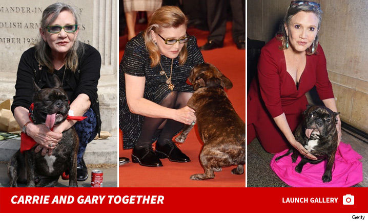 1227-carrie-fisher-dog-gary-photos