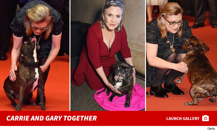 1227-carrie-fisher-dog-gary-photos-2