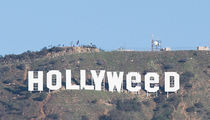 Hollywood Sign Vandalized and Now Reads 'Hollyweed' (PHOTO)