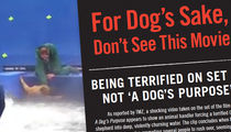 PETA Rolls Out Protest Flyers for 'A Dog's Purpose,' Recruiting Protesters (PHOTOS)