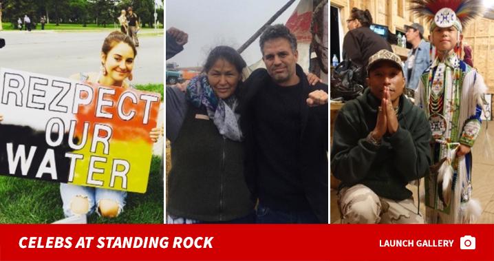 0125_celebs_standing_rock_footer