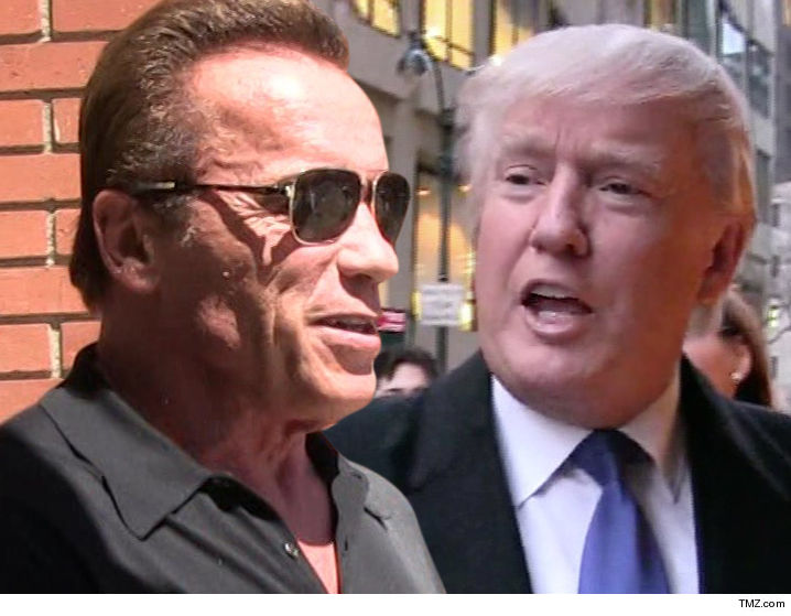 Arnold Schwarzenegger Fires Income Tax Shot Across Trump's ...