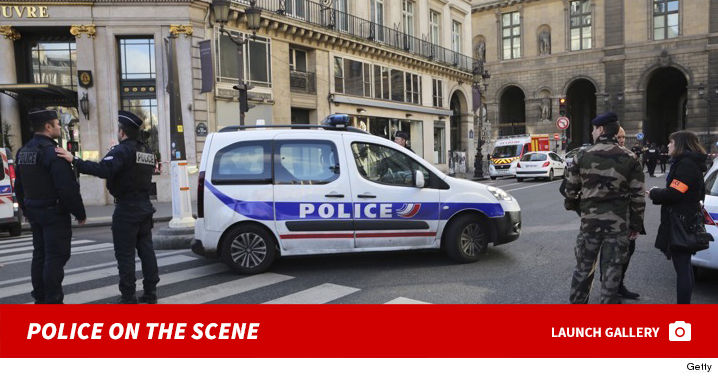 0203_louvre_attack_police_footer