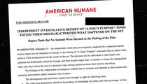 'A Dog's Purpose', American Humane Ass'n Has No Real Problem with Video