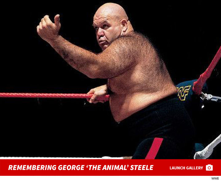 0217_remembering_george_animal_steele_launch