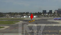 Harrison Ford -- Video of Taxiway Landing