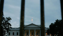 Shoelace White House Fence Jumper Strikes Again