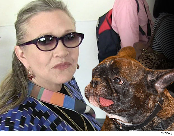 0327-carrie-fisher-gary-the-dog-tmz-getty-2