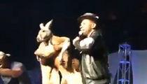 Mike Epps Kangaroo Video, Feds Taking Closer Look