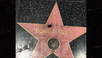 Donald Trump's Walk of Fame Star Vandalized with Marker, 'F*** Trump'