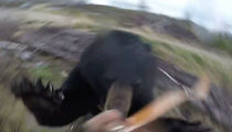 Bear Attacks Hunter, Hunter Somehow Survives