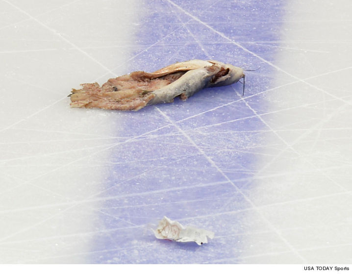 Nashville predators 39 dead catfish thrower charged with for Ice fishing for catfish