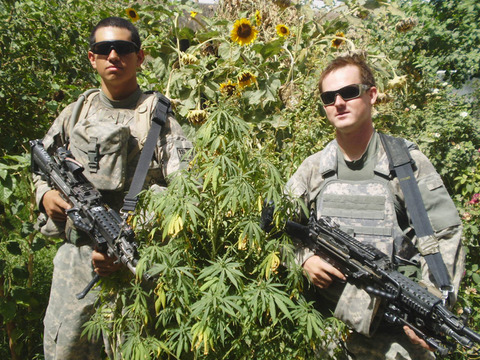 Military Marijuana Photo Gallery Pictures