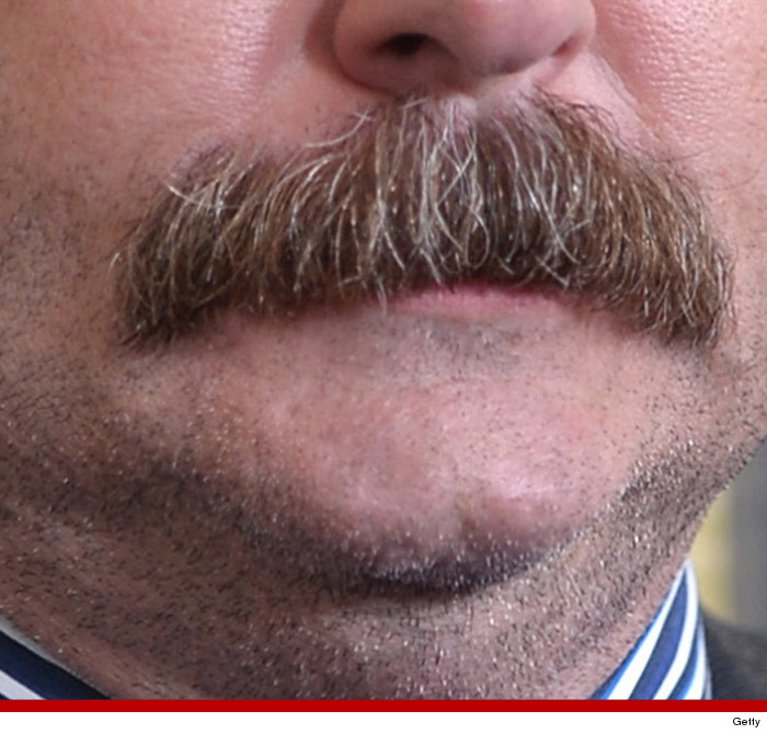 30 Dirty Ron Swanson Mustache Pics To Give Quot Parks And