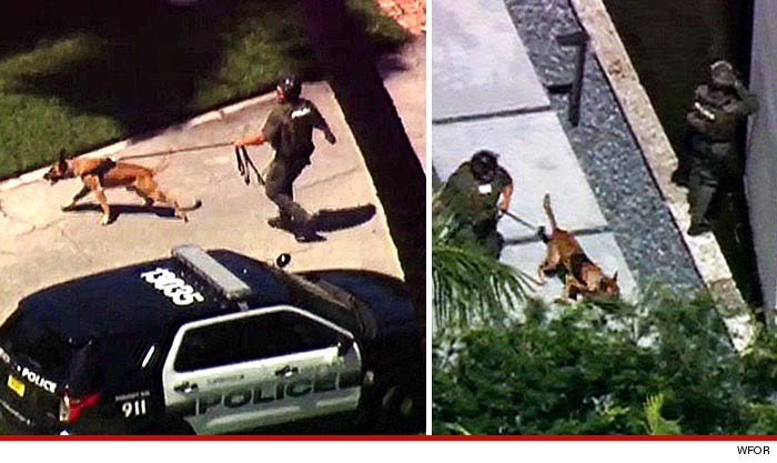 0311-police-dogs-cbs