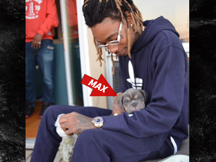 ea30c17d231c Wiz Khalifa -- New BFF is Young