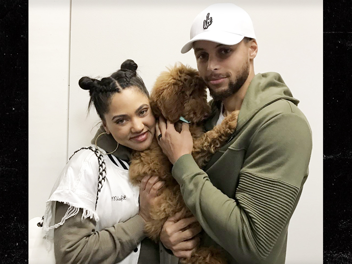 Steph Curry Drops $3,800 On Adorable New Puppy (PHOTOS ...